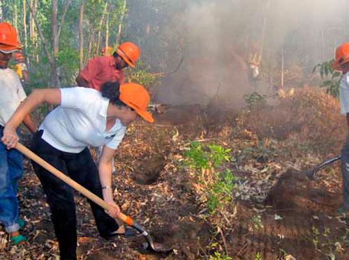 Desarrollan Inafor y Marena acciones para prevenir incendiosforestales